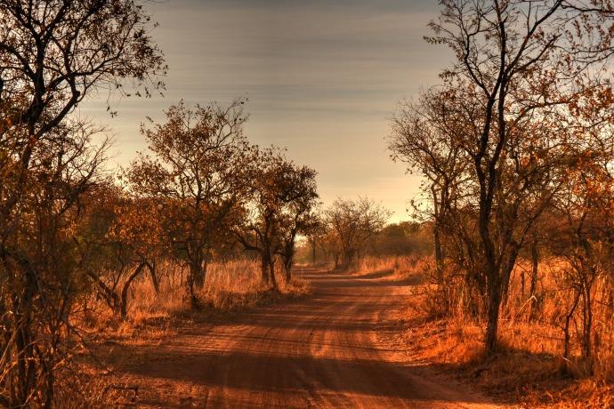 africa-landscape-1766771_1920